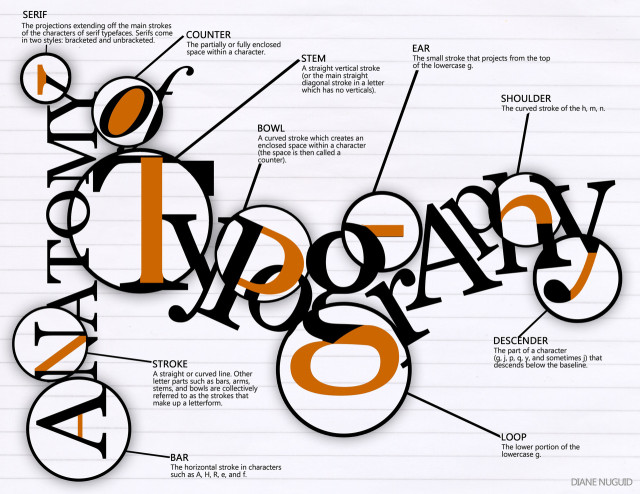 anatomy-of-typography-640x494